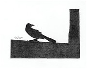 Blackbird Drawings Metal Prints - Blackbird Metal Print by Bob Garrison