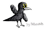 Blackbird Drawings - Blackbird by Jayson Halberstadt