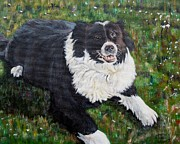 Collie Painting Framed Prints - Blackie Framed Print by Marilyn  McNish