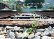 Hope Photos - Blade of Grass on Railroad Tracks by Yali Shi