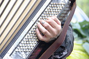 Buskers Photos - Blaines accordian by Marilyn Wilson