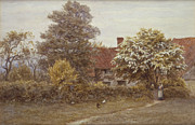 Chicken Framed Prints - Blakes House Hampstead Heath Framed Print by Helen Allingham