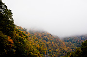 Smokey Mountains Art - Blanket of Clouds by DigiArt Diaries by Vicky Browning