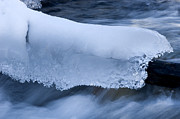 Alberta Landscape Prints - Blanket Of Ice Print by Bob Christopher