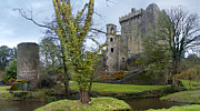 Leaves Digital Art Posters - Blarney Castle 3 Poster by Mike McGlothlen