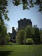 Irish Posters - Blarney Castle Ireland Poster by Teresa Mucha