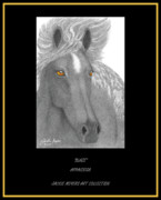 Wild Horses Drawings - Blaze by Jackie Meyers
