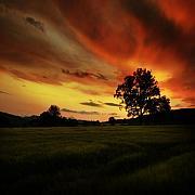 Blazing Skies Print by Angel  Tarantella