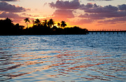 Trees. Visions Prints - Blazing Skies in Islamorada Print by Michelle Wiarda