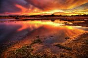 Ray Photo Prints - Blazing Sky Print by Carlos Caetano