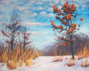 Winter Landscape Pastels Framed Prints - Blazing Winter Grasses Framed Print by Christine Kane