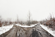 Winter Roads Prints - Bleak Print by Michal Boubin
