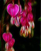 Fractalius Photo Framed Prints - Bleeding Hearts  01 Framed Print by Paul Ward