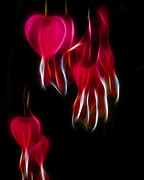 Bleeding Hearts Art - Bleeding Hearts 02 by Paul Ward