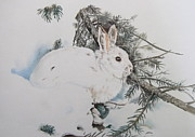 Rabbit Pastels - Blending In by Turea Grice