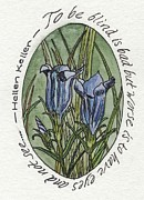 Quotation Painting Prints - Blind - Marsh Gentian Print by Bryana  Joy
