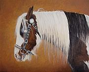 Blinkers Paintings - Blinkered  Listowel Fair by Pauline Sharp