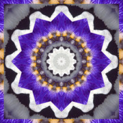Spiritual. Geometric Prints - Bliss Print by Bell And Todd