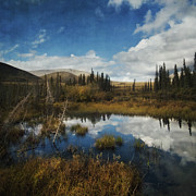 Yukon Territory Framed Prints - Blissful Lone Land Framed Print by Priska Wettstein