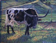 Wine Country Pastels Posters - Blk and White Longhorn Steer Poster by Denise Horne-Kaplan