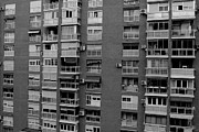 Villaraco - Block of flats. Bees