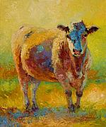 Cattle Painting Posters - Blondie - Cow Poster by Marion Rose