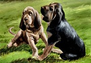 Bloodhounds Prints - Bloodhound Playtime Print by Barbara Walker