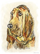 Clip Drawings Prints - Bloodhound-Watercolor Print by Gordon Punt