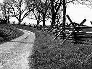 Antietam Photos - Bloody Lane by Brian M Lumley