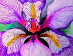 Alive Paintings - Bloom by Ramneek Narang