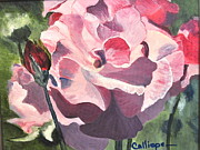 Calliope Thomas - Bloomed Rose