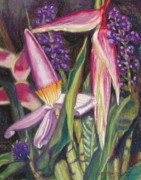 Tropical Art Pastels Posters - Bloomin Banana Poster by Patti Bruce - Printscapes