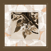 Blossoms Mixed Media Prints - Blooming Branch Print by Bonnie Bruno
