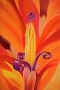 Bromeliad Originals - Blooming Bromeliad by Jocelyn McMath