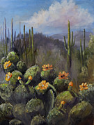 Jan Holman - Blooming Cactus