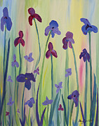 Stacey Zimmerman - Blooming Irises