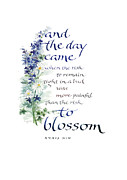 Job Framed Prints - Blossom I Framed Print by Judy Dodds