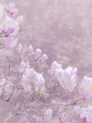 Bloom Art Mixed Media - Blossom VI by Kaypee Soh - Printscapes