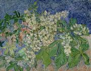 Vincent Van (1853-90) Paintings - Blossoming Chestnut Branches by Vincent Van Gogh