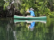 Blue Amongst The Greens - Canoeing On The St. Marks Print by Marilyn Holkham