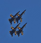 Dog Fights Prints - Blue Angels 3 Print by Cindy Fullwiler
