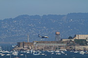 Sail Boats Prints - Blue Angels Fat Albert C130T Hercules Across San Francisco Alcatraz . 7D7937 Print by Wingsdomain Art and Photography