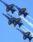 Blue Angel Photos Posters - Blue Angels leaving a white trail Poster by Wingsdomain Art and Photography