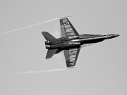 Blue Angel Photos Posters - Blue Angels with Wing Vapor . Black and White Photo Poster by Wingsdomain Art and Photography