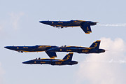 Zannie B - Blue Angels