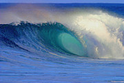 Surf Art Digital Art Posters - Blue Barrel Poster by Paul Topp