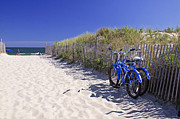Kelly S Andrews - Blue Beach Bikes