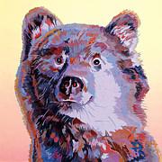 Blue Bear Print by Bob Coonts