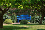 Stately Home Posters - Blue bench by the garden wall Poster by Louise Heusinkveld