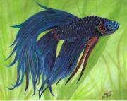 Richard Brooks - Blue Betta
